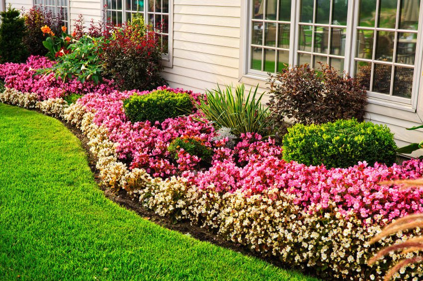 Guidelines for arranging a flower garden in front of the house